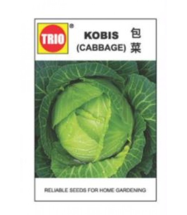 CABBAGE SEED TRIO TS009